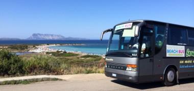 Beach Bus